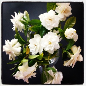 Gardenias from our yard